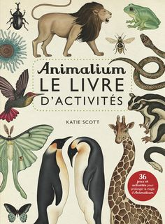 Animalium, le livre d'activités