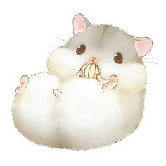 Animal - hamster