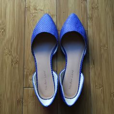 Blue flats BRAND NEW blue flats. Pointed toe. Super cute. Never worn. No box - was going to keep but then never wore. Maiden Lane Shoes Flats & Loafers