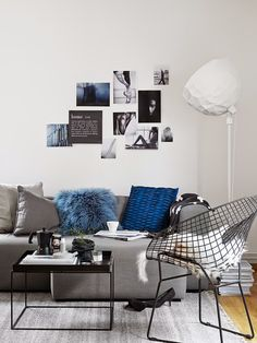 Grey & Blue (picture by Sara Danielsson)