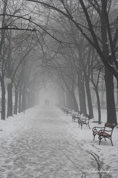 A street after smow fall in Skopje City Park, Macedonia