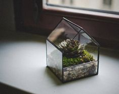 Glass Terrarium Small House Stained glass decoration Home decor Planter for indoor gardening Succulent Christmas gift Moss Fairy garden Terrarium Cactus, Glass Terrarium, Home Decoracion, Green Pillows, Glass Boxes, Handmade Home Decor, Decorating Your Home, Stained Glass, Glass Art