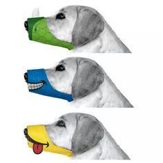 Cesar Millan, funny muzzle. Too cute!