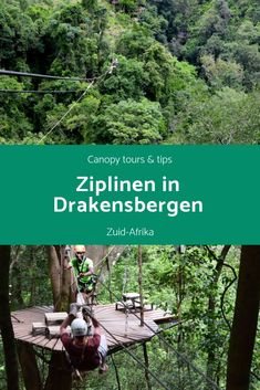 Ziplinen in Zuid-Afrika met Canopy tours Bora Bora Honeymoon, Honeymoon Night, Sa Tourism, Honeymoon Essentials, Cultural Experience, Africa Travel, Countries Of The World, Trip Planning, Canopy