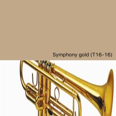 Behr Symphony Gold T16-16 | SwatchDeck