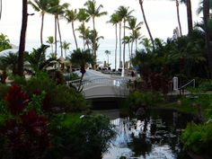 5 Things that Surprised Me About Maui