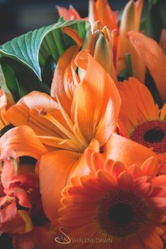 Orange lily and daisy bouquet | Shalene is an Edmonton based photographer who specializes in wedding photography. Her photos are simple and elegant with a vintage style feeling.