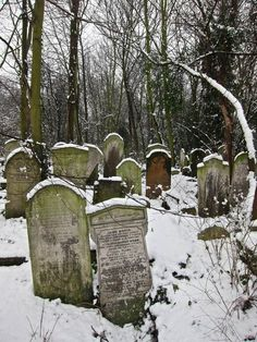 """Snowfall at Bow Cemetery, one of the """"Magnificent Seven"""" created by act of Parliament in 1832 as the growing population of London overcrowded the small parish churchyards. Extending to twenty-seven acres and planned on an industrial scale, """"The City of London and Tower Hamlets Cemetery"""" as it was formally called, opened in 1841 and within the first half century alone around a quarter of a million were buried here.  Spitalfields Life"""