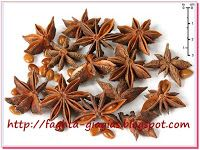 llicium verum (star anise, star anise seed, Chinese star anise or badiam) Star Anise Tea, Bird Flu Virus, Anise Oil, Palmiers, Scented Oils, Medicinal Herbs, Nigella, Kraut, Herbal Remedies