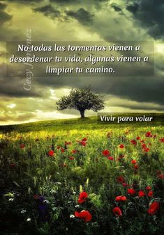 Spanish Inspirational Quotes, Spanish Quotes, Woman Quotes, Life Quotes, Quotes En Espanol, Spiritual Messages, Calm Quotes, Good Morning Messages, Positive Inspiration