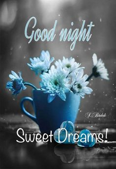 Good Night With Flowers Images - Oh Yaaro Good Night Qoutes, Good Night Quotes Images, Good Night Friends, Good Night Messages, Good Night Wishes, Night Pictures, Good Night Flowers, Beautiful Good Night Images, Good Night I Love You