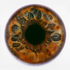 """Iris (we share our chemistry with the stars) MQ 2801 (2009) - Marc Quinn. In the artist's own words, """"They are like a leakage of the vivid interior world of the body to the monochrome world of the skin."""""""