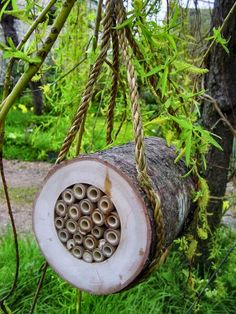 This habitat is designed for mason bees, and other solitary bees which are hugely important for pollination in successful gardening, helping improve fruit. Bug Hotel, Permaculture, Diy Nature, Wild Bees, Mason Bees, Bee House, Save The Bees, Bee Keeping, Garden Projects