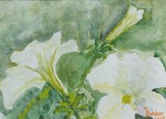 Flowers, Nature, Painting, Image
