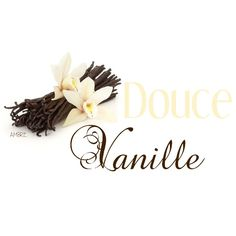 DσนᏣε ⱴąŋɨℓℓҽ Vanilla Cream, French Vanilla, Honey Caramel, Ambre, Tasty, Place Card Holders, Ivoire, Color Themes, Boards