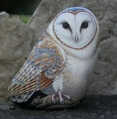 barn owl painted on a rock- very neat Painted Rocks Owls, Owl Rocks, Painted Rock Animals, Painted Stones, Painted Pebbles, Pebble Painting, Pebble Art, Stone Painting, Stone Crafts