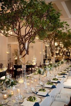 Add Manzanita trees to your table decor to create that luxe wedding feel. Add Manzanita trees to you Wedding Table Decorations, Wedding Themes, Wedding Styles, Wedding Venues, Tree Centrepiece Wedding, Romantic Wedding Centerpieces, Table Wedding, Luxe Wedding, Rustic Wedding