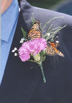 Image detail for -butterflies land on the father of the bride's boutonniere    Keywords: #butterflyweddings #jevelweddingplanning Follow Us: www.jevelweddingplanning.com  www.facebook.com/jevelweddingplanning/