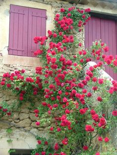 Lourmarin, Provence, France,lovely little village,filled with charming,  shops,cafes and people