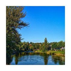 Guten Morgen Adliswil #lebeninadliswil #livinginadliswil #adliswil #sihl #sihltal #herbstmorgen #autumn River, Instagram, Outdoor, Good Morning, Life, Outdoors, Outdoor Games, The Great Outdoors, Rivers