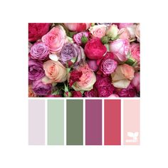 design seeds | for all who ♥ color ❤ liked on Polyvore featuring backgrounds, color palettes and color inspiration