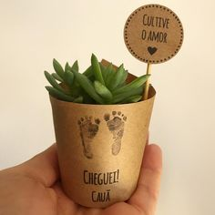 Diy Concrete Planters, Diy Planters, Baby Shawer, Mini Plants, Baby Alive, Teacher Appreciation Gifts, You Are My Sunshine, New Baby Products, Diy And Crafts