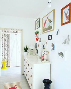 Colorful entryway with animalprints on the wall