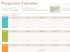 Pregnancy calendar template includes all the relevant details of pregnancy like date of conceiving, expected due date and week by week progress with relevant details, diagnosis and medications. Different features of this calendar make it a must have piece of paper before the big day of your delivery.