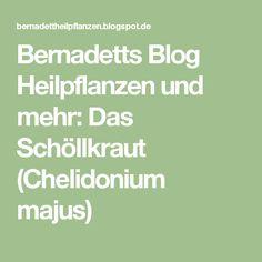 Bernadetts Blog Heilpflanzen und mehr: Das Schöllkraut (Chelidonium majus)
