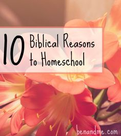 10 Biblical Reasons to Homeschool