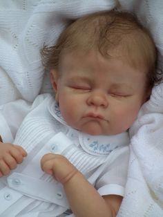 doves nursery reborn dolls | The Cradle Kits Reborn Baby / Toddler Doll Kit Tippi By ...