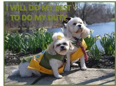 LINE 2 OF THE PUP SCOUT PLEDGE JOIN PUP SCOUTS TODAY AT http://www.pupscoutsusa.com/