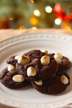 Merry Christmas! My Christmas wish is for everyone to enjoy a day filled with food, family, laughter and love. And COOKIES! Today I'm sharing a special holiday cookie recipe that's vegan friendly and kid approved. I recently served these Hot Cocoa Crinkle Cookies as part of an all vegan spread at a kindergarten classroom holiday…