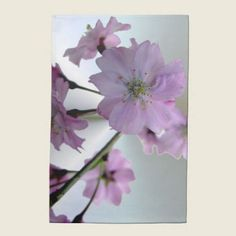 Flowering Cherry kitchen towel. Also, matching napkins and placemats.