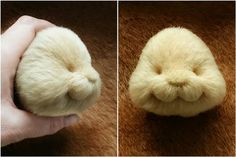 1 million+ Stunning Free Images to Use Anywhere Sewing Stuffed Animals, Stuffed Animal Patterns, Needle Felted Animals, Felt Animals, Needle Felting Tutorials, Vintage Teddy Bears, Rabbit Toys, Bear Doll, Sewing Toys
