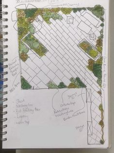 Good use of diagonal patio paving to enlarge the garden in a simple sketch drawing of a bird and bee friendly garden.