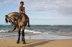 Young boy riding his horse on the beach in Puerto Rico - Experience Culture #ExpediaWanderlust