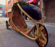 WeirdWood: Bent Bamboo Bicycle