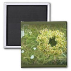 This is a picture Queen Anne's Lace take I took on a walk through a local field. I found the flower blossoming to be interesting. Multiple sizes are available. Great for home or office decor. Also a great gift idea for holidays, birthdays, anniversary, and house warming. Add your own text to personalize the products.