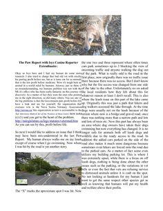 The Paw Report August 2014 Long Lake, August 26, Lake Park, Nova Scotia, Adventure, Adventure Nursery