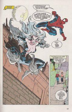 Spiderman y Black Cat
