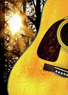 Songs from the wood - Rain soaked acoustic guitar in the forest. Original fine art music in nature photography by Bob Orsillo  Copyright (c)Bob Orsillo / http://orsillo.com - All Rights Reserved.  Buy art online.  Buy photography online