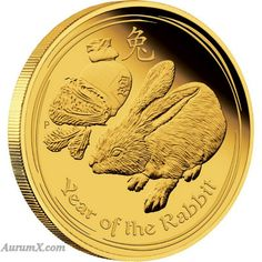 Year of the rabbit gold coin