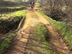 Cascata de S. Martinho Country Roads