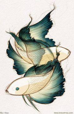 Koi fish drawing, two