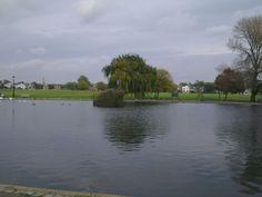Pond on the Heath