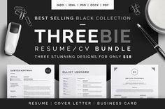 Resume/CV - Threebie Bundle 4