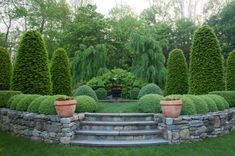 Wonderful Evergreen Grasses Landscaping Ideas 87