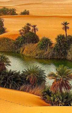 Landscape pictures nature rivers New Ideas Landscape Pictures, Nature Pictures, Cool Pictures, Beautiful World, Beautiful Places, Beautiful Beautiful, Deserts Of The World, Desert Life, Desert Oasis