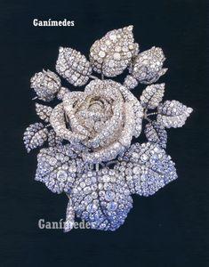 """En 1854 para la princesa Matilde Bonaparte, Theodore Fester realizó esté increiblemente maravilloso broche en oro y plata con diamantes.  Se conoce tiene 2.637 diamantes que pesan un total de 136 kilates. Sin contar otros 860 diamantes más pequeños. Luego de la muerte de la princesa en 1904 Cartier vendió éste broche a la señora Cornelius Vanderbilt III """"Reina de la sociedad de Nueva York"""""""